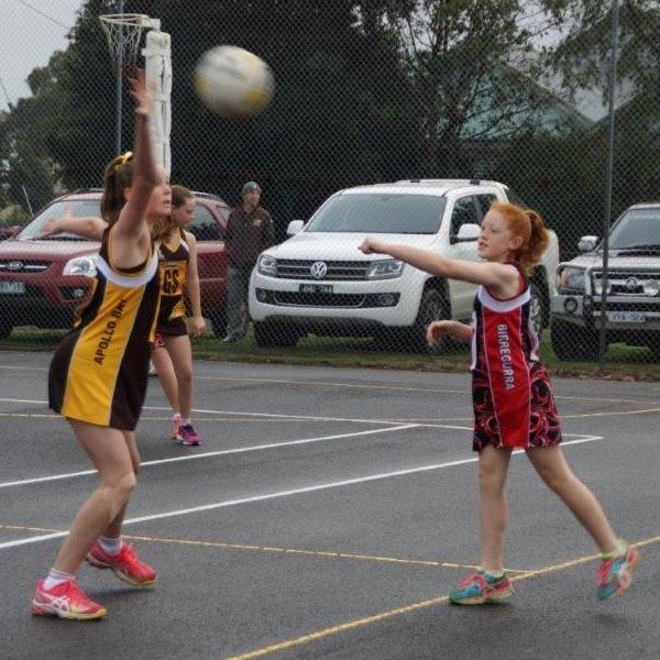 Junior netballers